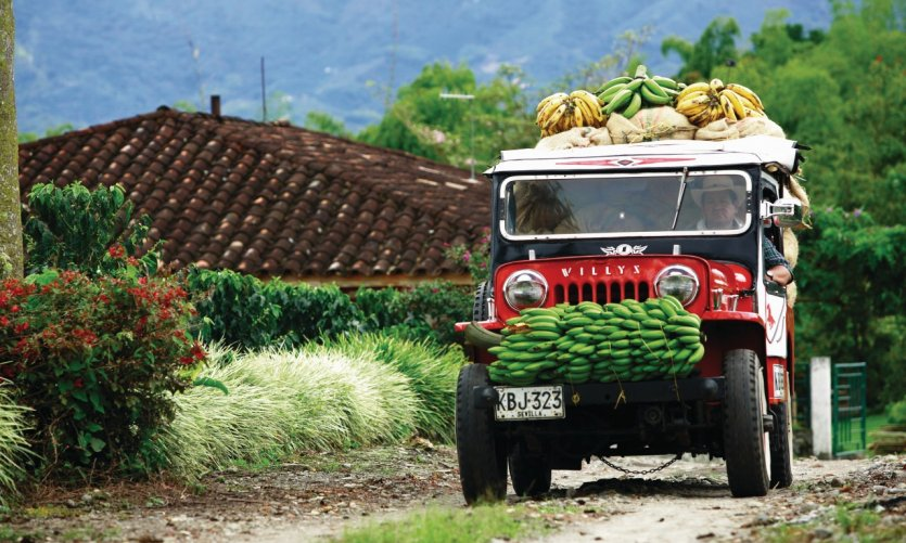 Jeep Willys typique de la région du Café.