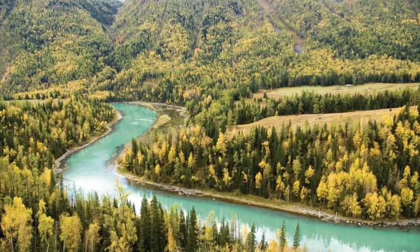 Réserve naturelle du lac Kanas, massif de l'Altaï.
