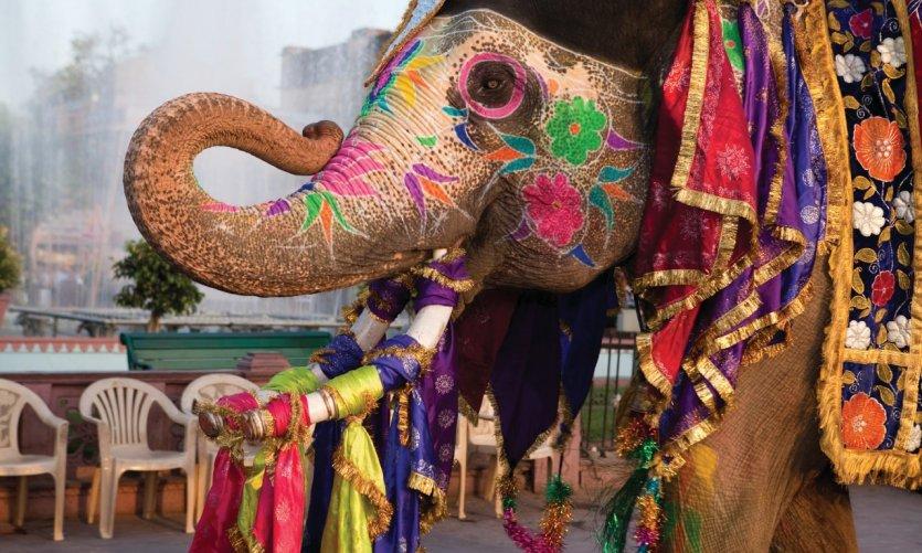 Gangaur festival de Jaipur.