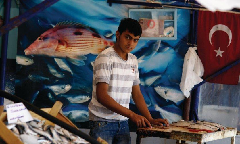 Marché aux poissons à côté du pont de Galata.