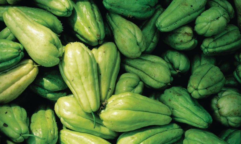 Chouchou ou chayotte, un légume local, au marché de Santo Domingo.