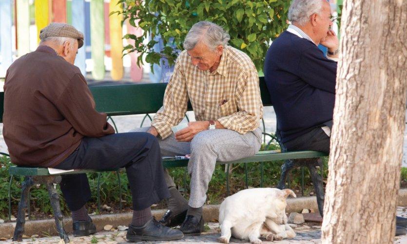 <p>Partie de cartes à l'ombre à Faro.</p>