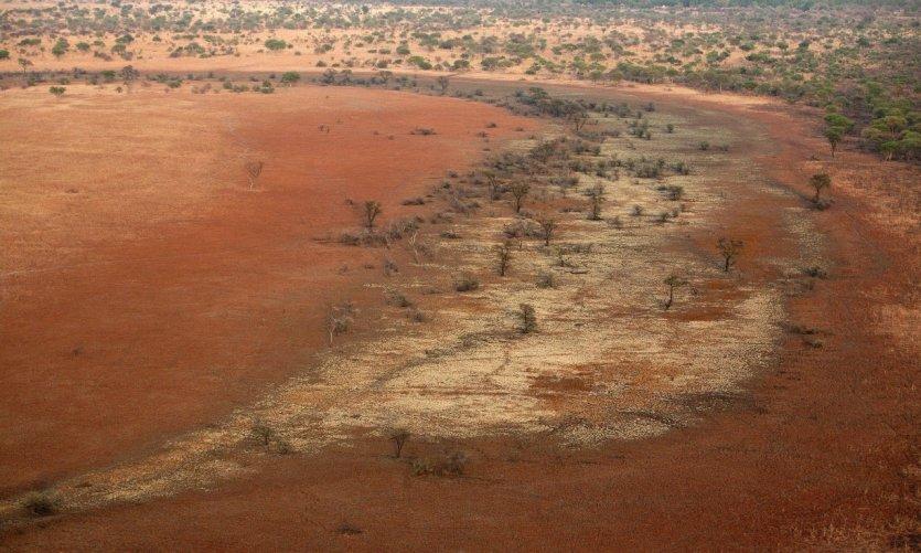 Vue aérienne du Parc National de Zakouma.
