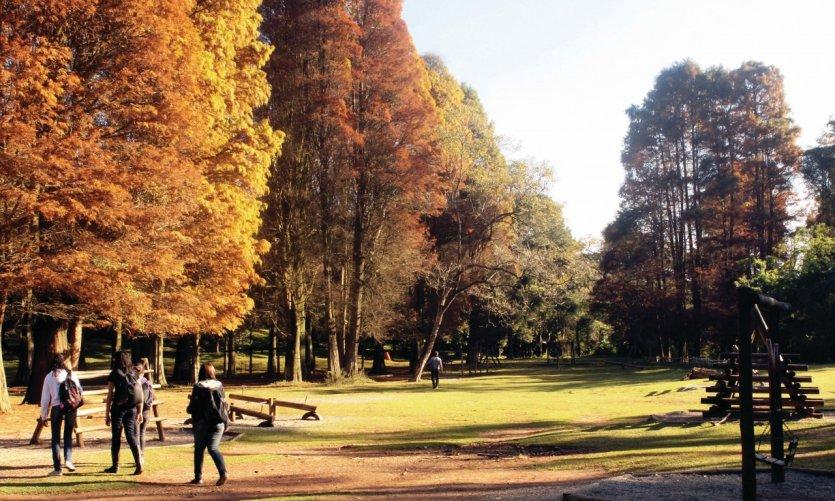 Parque Horto Florestal