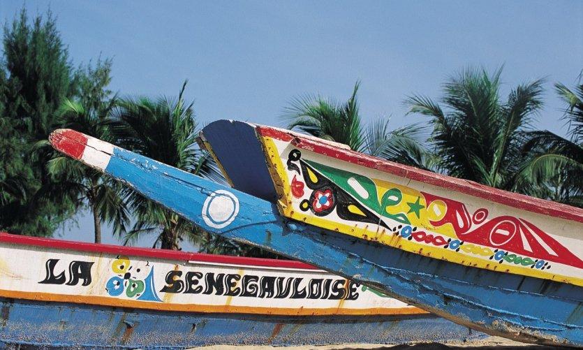 Dos semanas en Senegal