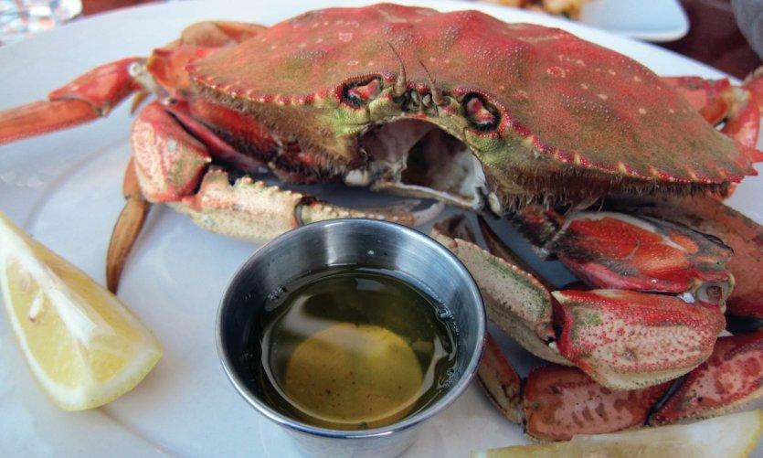 Crabe Dungeness, au menu des restaurants de Vancouver.
