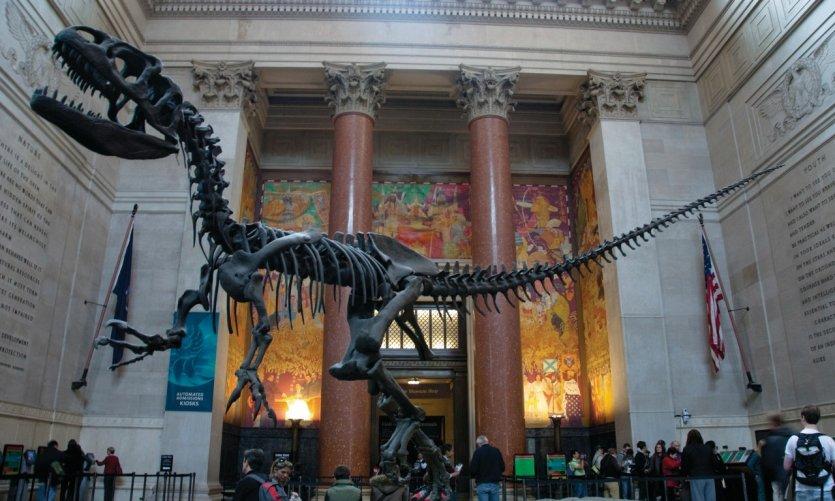 Le hall d'entrée de l'American Museum of Natural History (Upper West Side).