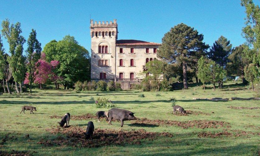 Le château de Quenza