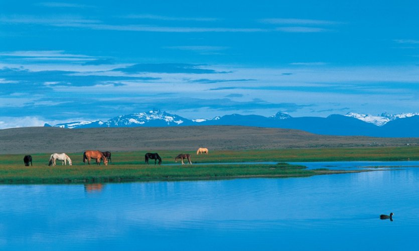 <p>Lake of the surrounding area of El Calafate.</p>