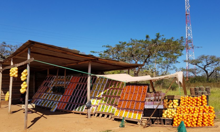 <p>Vendedor de fruta a lo largo del camino.</p>