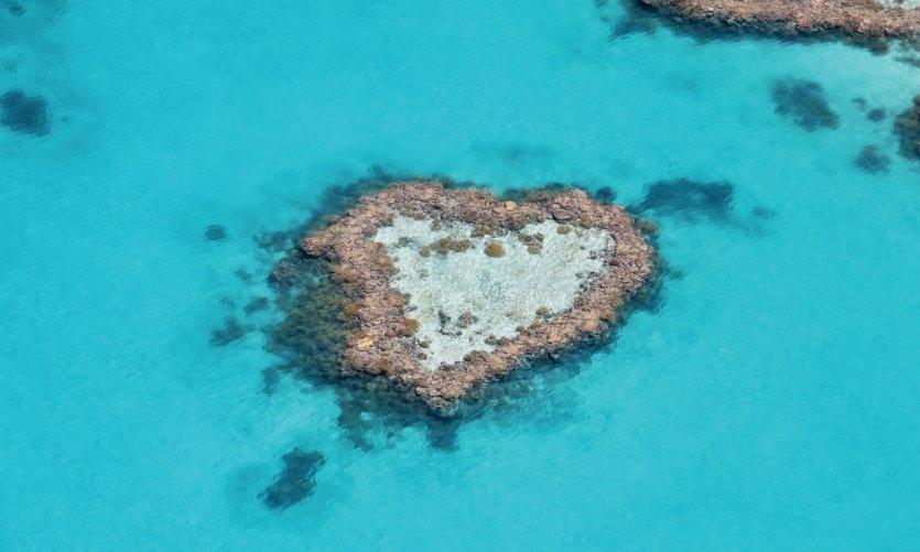 Récif en forme de coeur sur la grande barrière de corail.