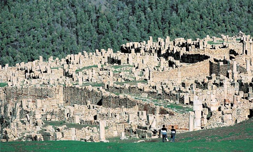 Site of Djemila.