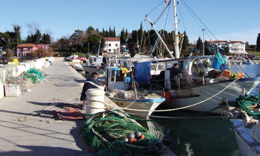 Port de pêche de Pineta.