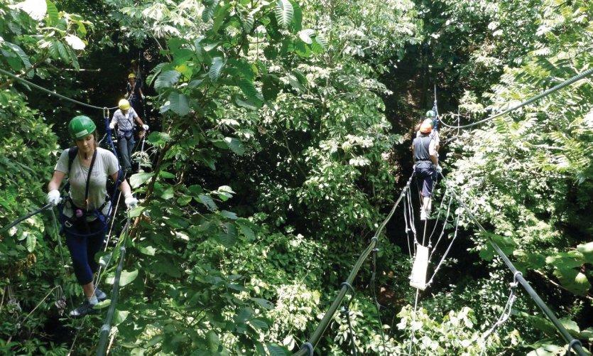 Ponts de singes à l'Éco-reserva Mbatoví.