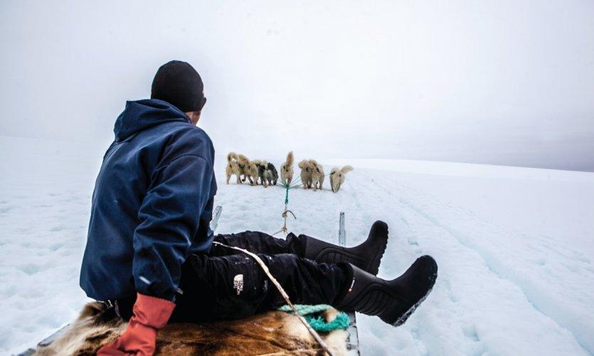 Musher sur son traîneau au glacier Lyngmark à Qeqertarsuaq.