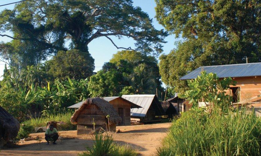 Village noir-marron de Kajana et habitations traditionnelles.