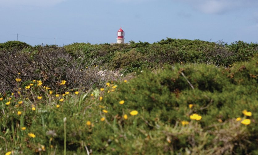 Phare du cap de Saint-Vincent (Cabo São Vicente).