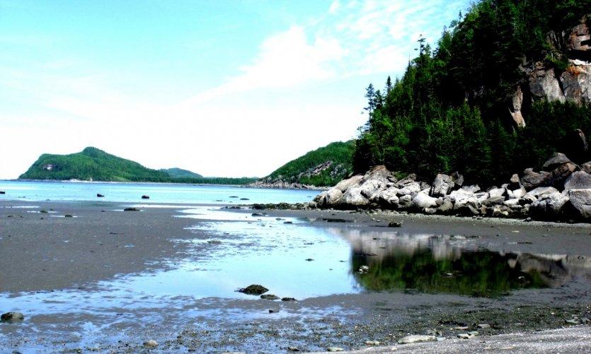 Parc national du Bic.