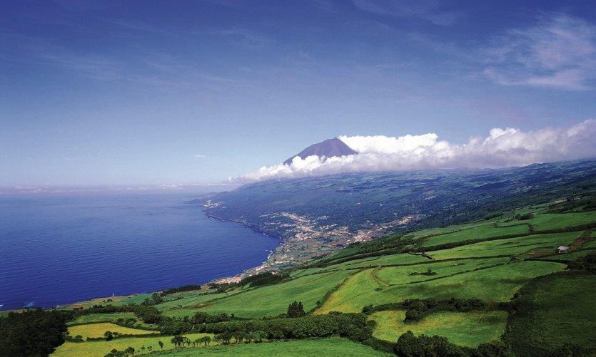 Paysage de l'île de Pico.