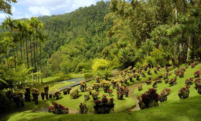 Jardín de Balata.