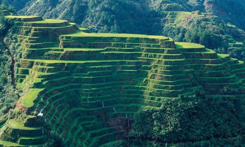 Rizières en terrasses de Banaue.