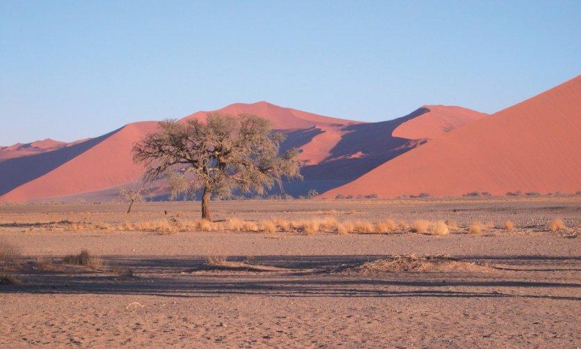 Dunes de Sossusvlei.