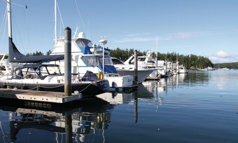 <p>Marina de Roche Harbor.</p>