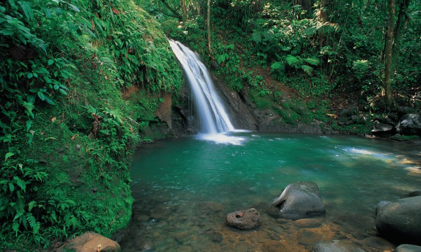 Hiking adventure in the footsteps of Guadeloupe