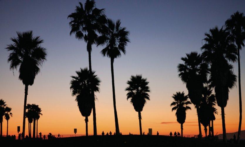 Coucher de soleil sur Venice Beach.