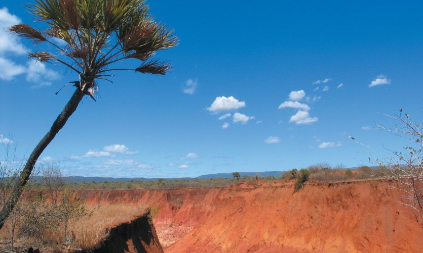 Red and arid land in northern Madagascar, near Antsiranana