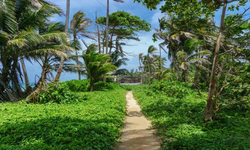 <p>Little Corn island.</p>