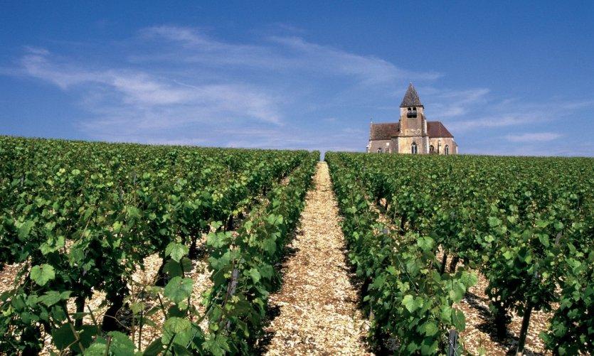 L'église de Préhy, dans le vignoble de Chablis.