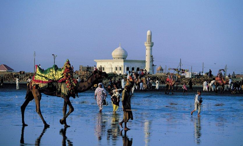 Chamelier devant une mosquée.