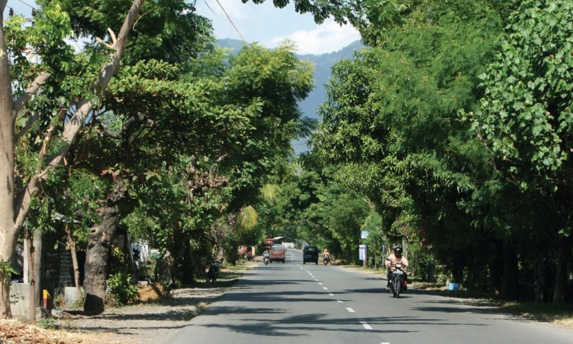 Main roads in the north of Bali linking all the coastal points.