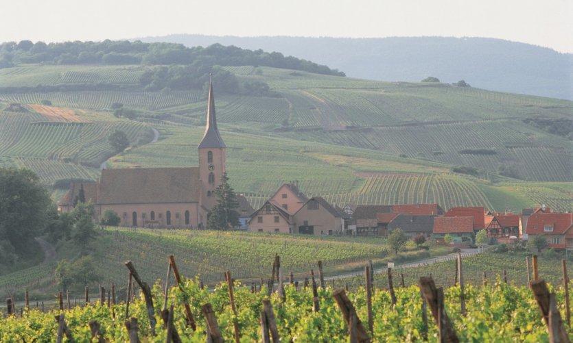 Blienschwiller, sur la Route des Vins d'Alsace
