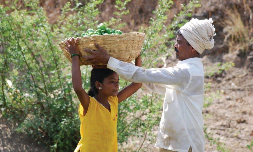 Famille travaillant dans leurs champs.