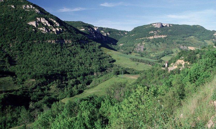 Aux environs de Roquefort-sur-Soulzon