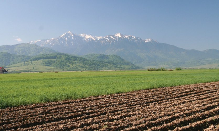 Paysage de la région de Braşov.