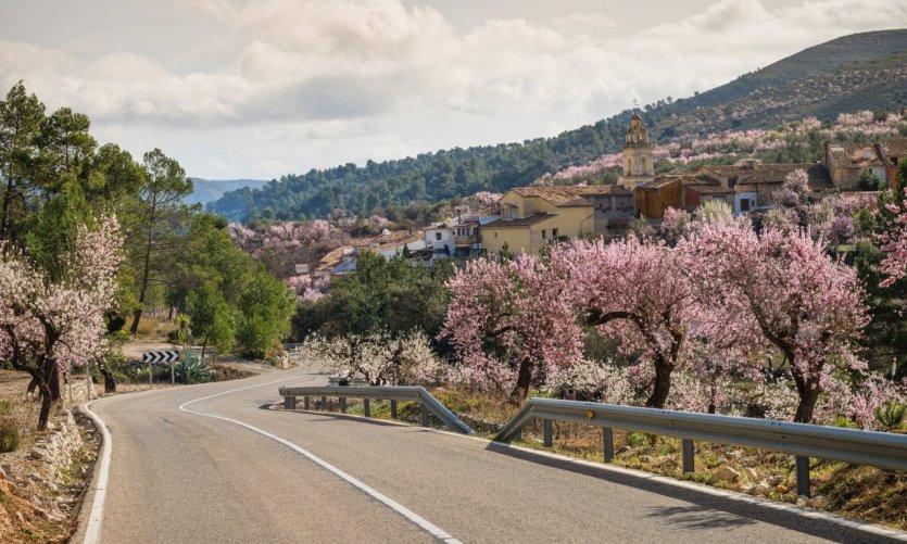 Route de montagne dans la région de la Costa Blanca.