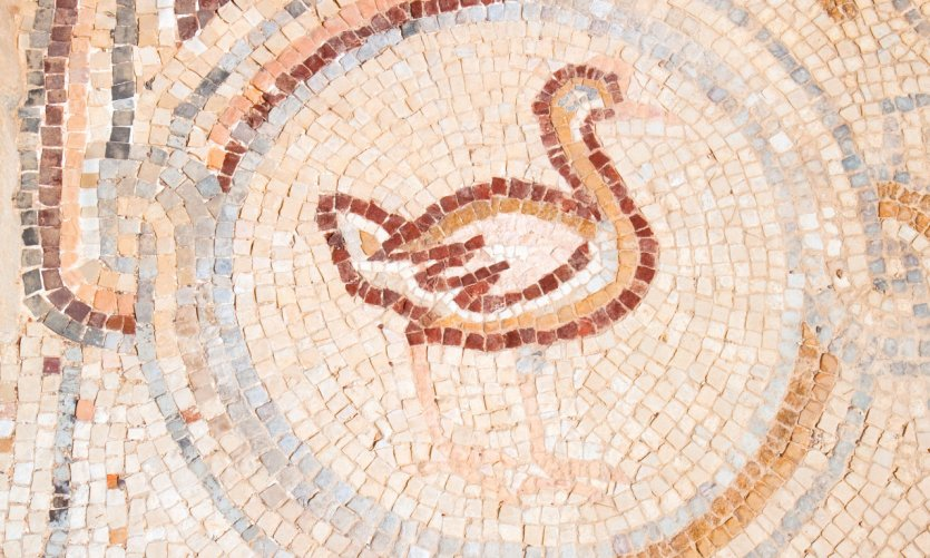 <p>Sol en mosaicos de Qasr Hallabat.</p>