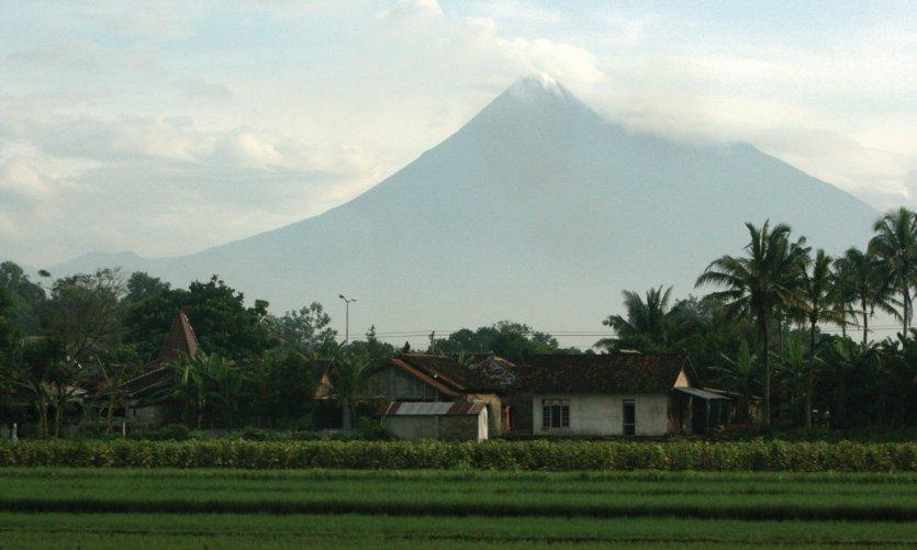 From the volcano train between Yogyakarta and Surabaya.