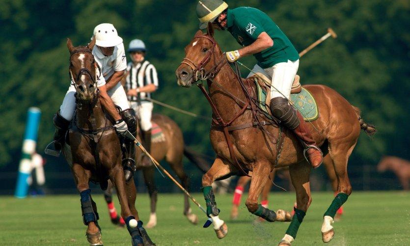 Match de polo à Chantilly