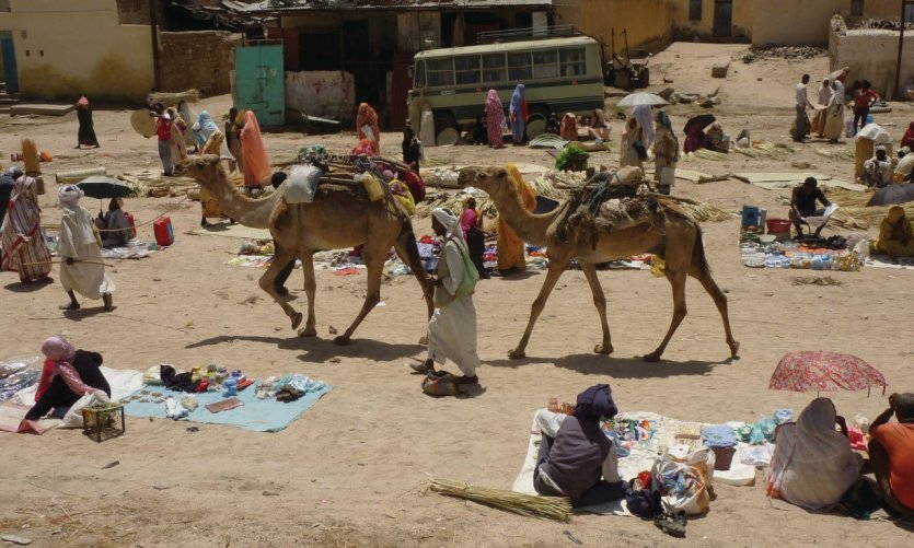 Dromadaires passant au milieu du marché aux babioles.