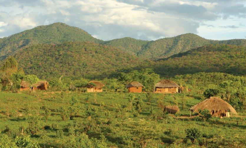 Paysage des rives du lac Malawi.