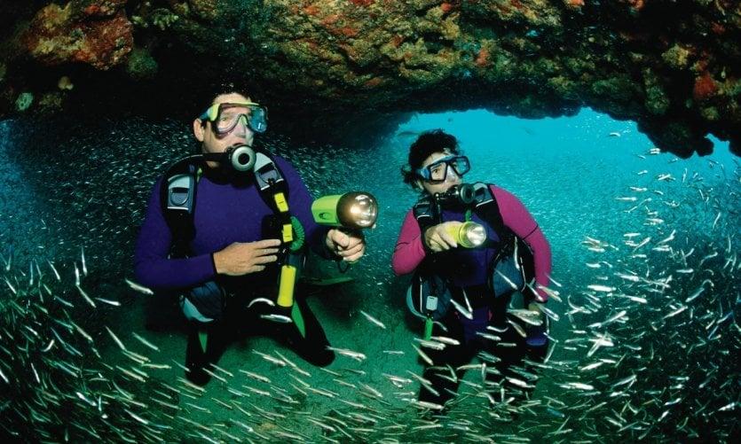 <p>Scuba diving, Key Largo.</p>