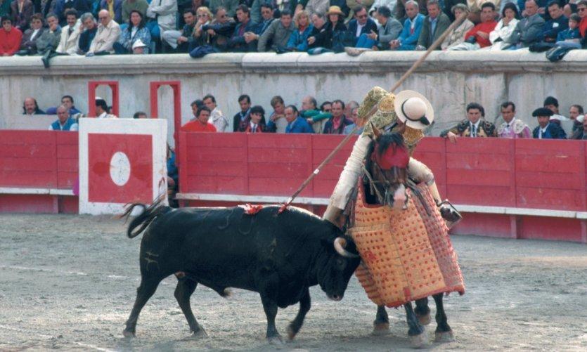 Corrida dans les arènes de Nîmes