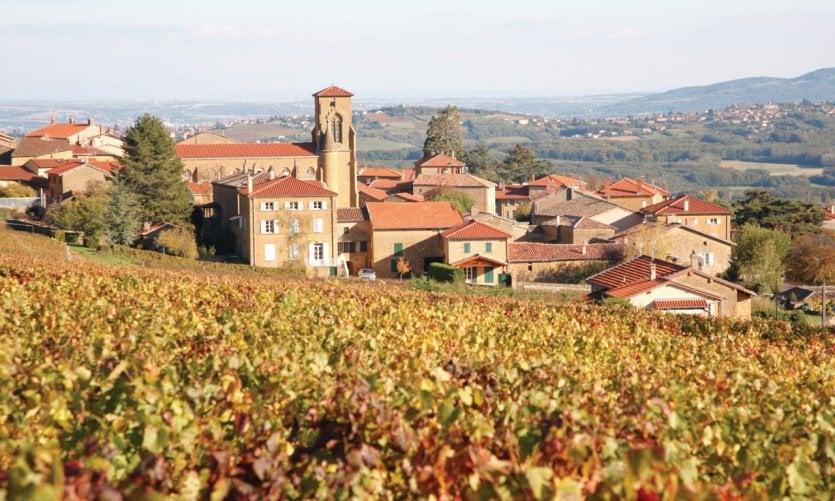Vue sur le village de Theizé et son vignoble.