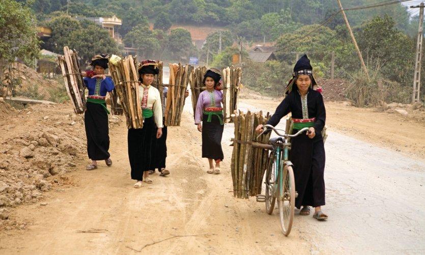 <p>Mujeres que transportan madera.</p>