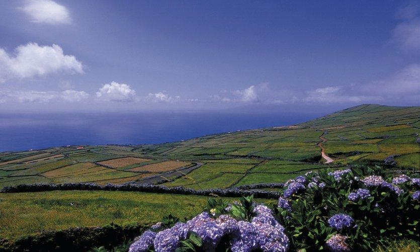 Paysage de l'île de Corvo.