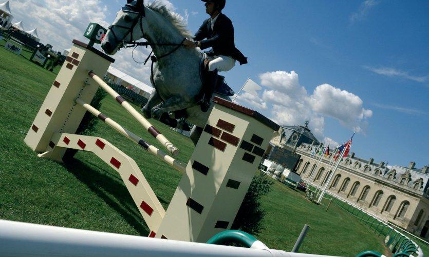 Course de sauts d'obstacles - Chantilly